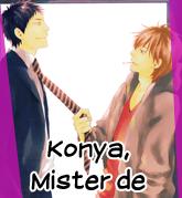 http://kimi-hana-fansub.blogspot.com.ar/2014/01/konya-mister-de.html