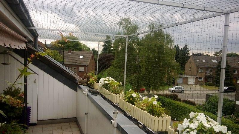 katzennetz nrw die adresse fur ein katzennetz katzennetz With katzennetz balkon mit vertical garden online