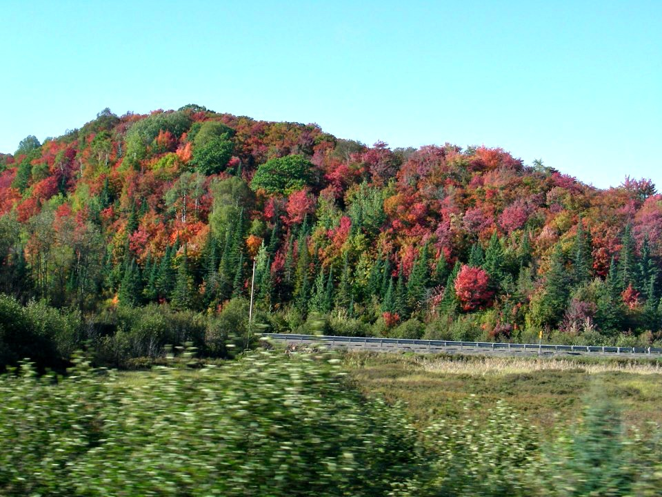 Sault St Marie Wilderness Rail Tours