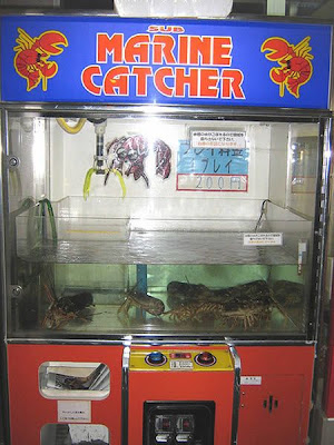 The strangest things sold in vending machines Seen On www.coolpicturegallery.us