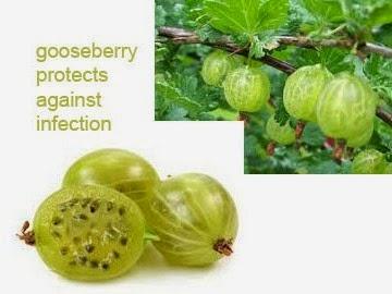 gooseberry health benefits 8