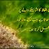 Alfaz Ka Asar Sunnay Walay par Tab Hi Hota ha - Best Urdu Words Grafix