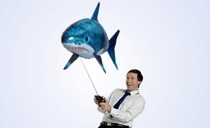 Loan Shark Stories Nz