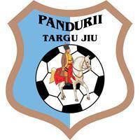 Rezumat Pandurii Tg Jiu FC Botosani 6-1 20.10.2013
