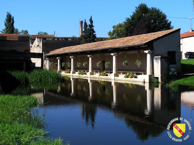 GONDREVILLE (54) - Village - Lavoir XIXe