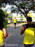 Newton Challenge 2012 - never stop running