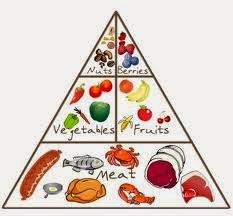Subscribe to this Blog! Click Paleo Pyramid Below