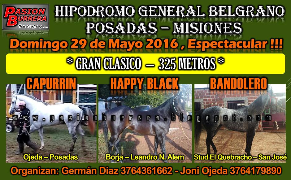 POSADAS - 29 - 325