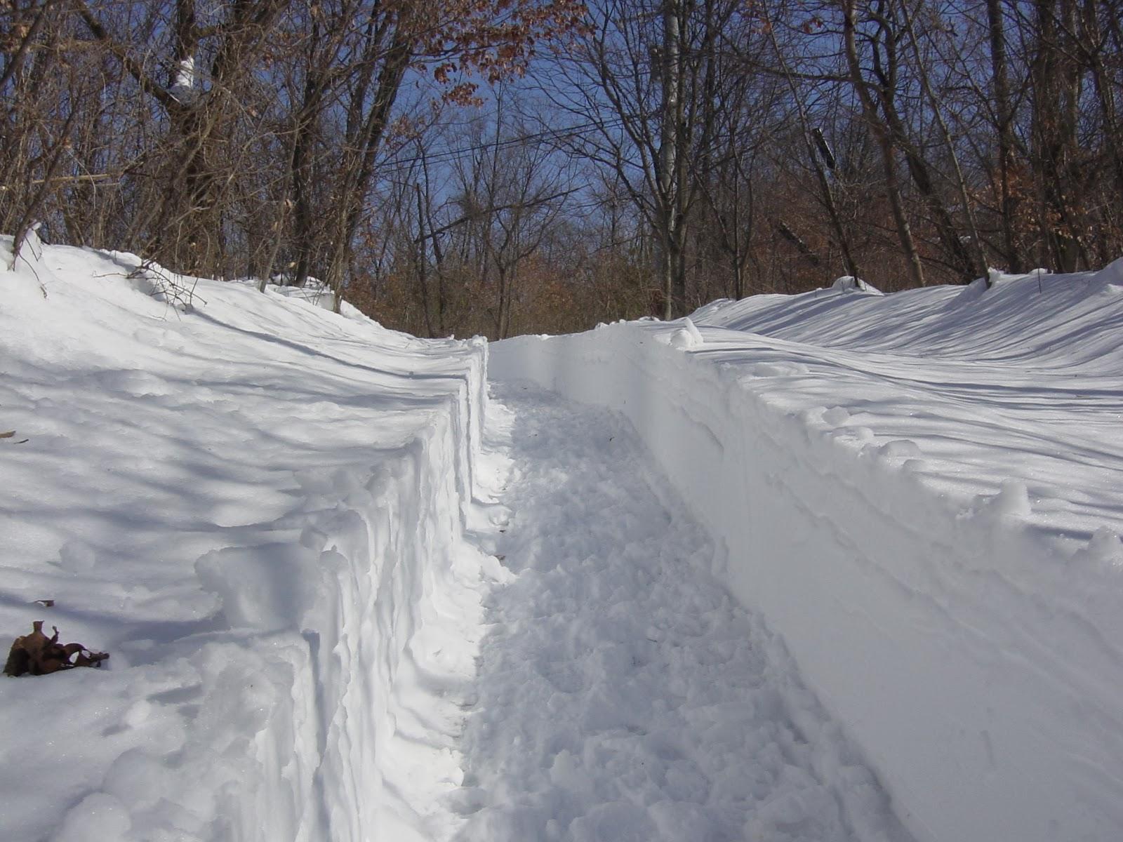 雪かきされた道