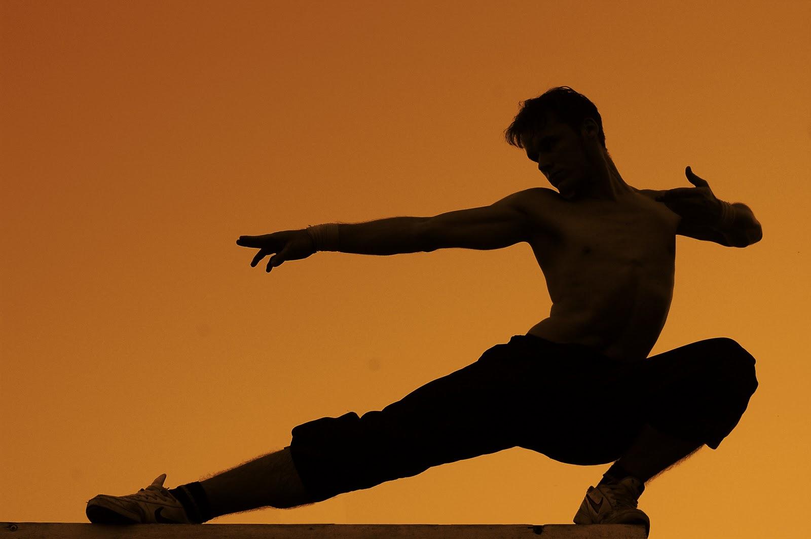 Sports Stars Celebrity: Martial Arts