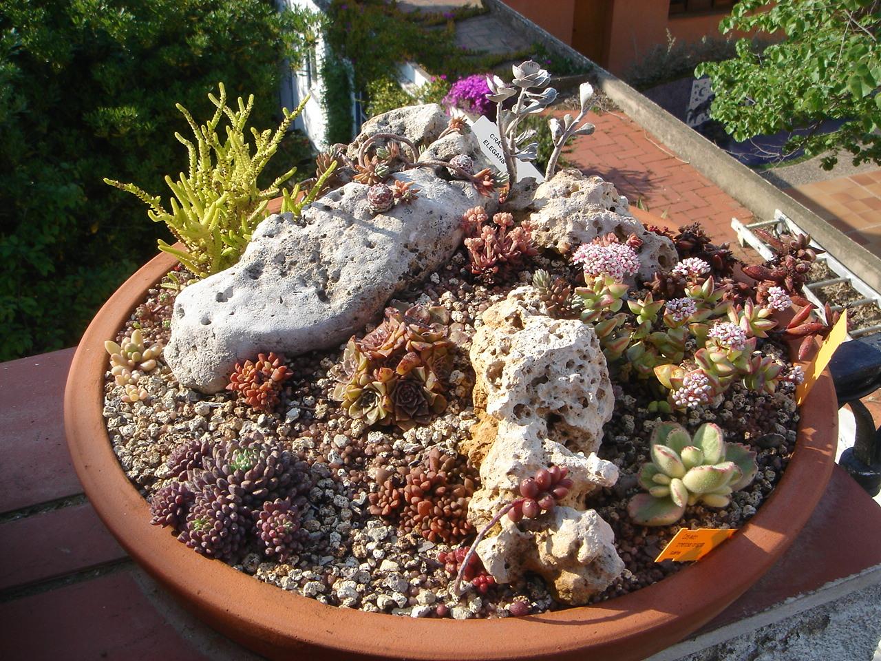 Superieur Garden At Heart