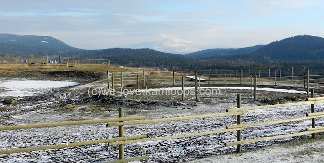 We look across the Jandana corrals and see Martin Mountain