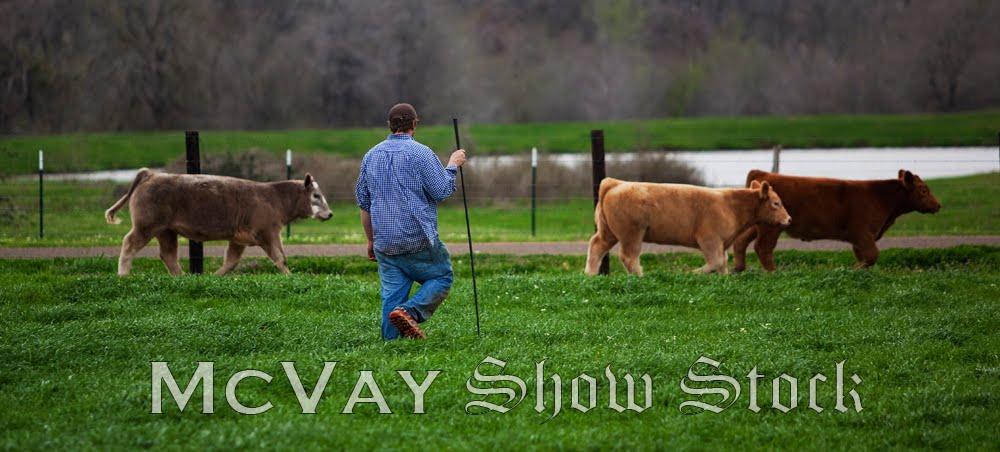 McVay Show Stock