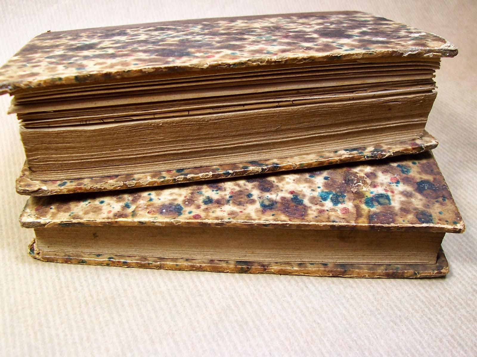 librairie ancienne et autres tr u00e9sors     nouveau manuel du menuisier  de l u0026 39  u00e9b u00e9niste et du