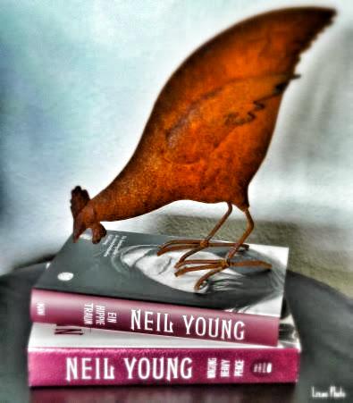 Rusted Hoon Buch