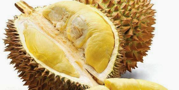 Buah durian yang kaya manfaatnya.