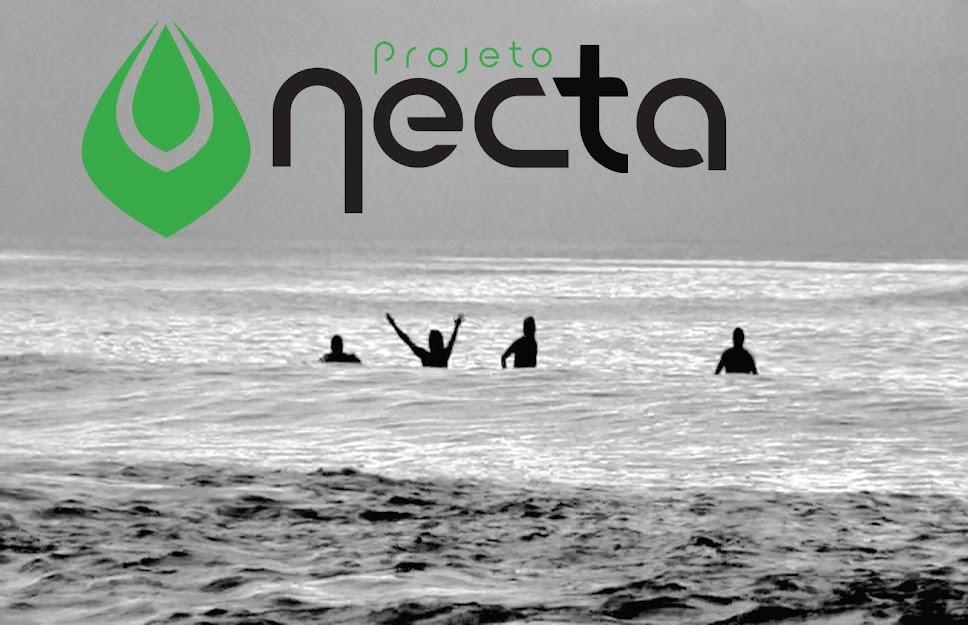 Projeto Necta