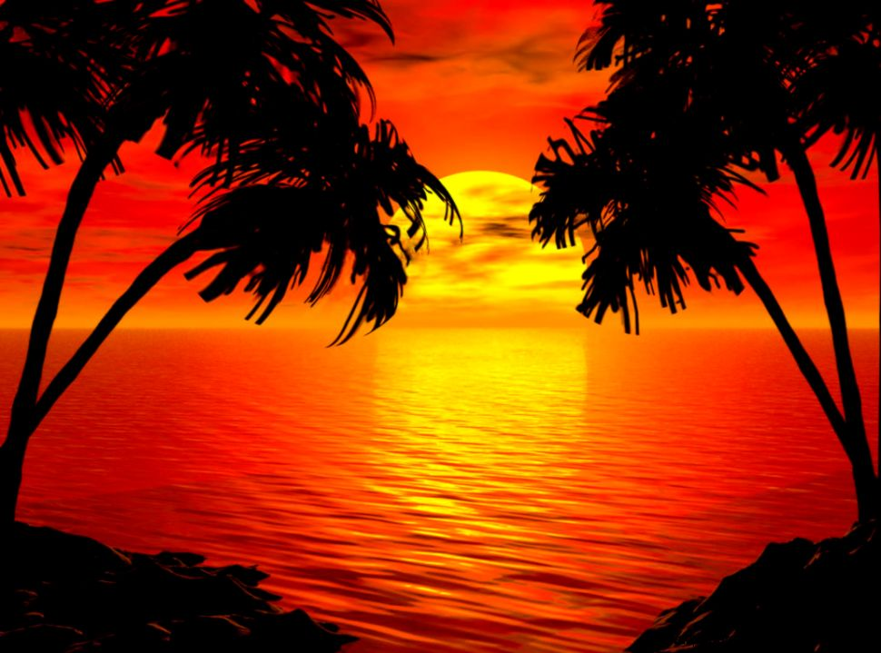tropical beach paradise sunrise   Google Search  shimmer