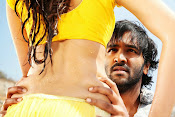 Rowdy Movie Song Photos-thumbnail-10