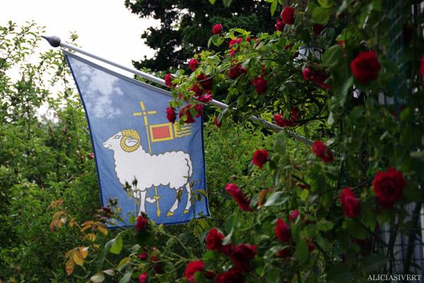 aliciasivert, alicia sivert, alicia sivertsson, gotland, gotlands flagga, flag, rosor, roses