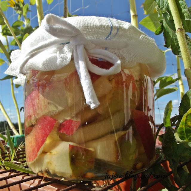 Ocet z jabłek