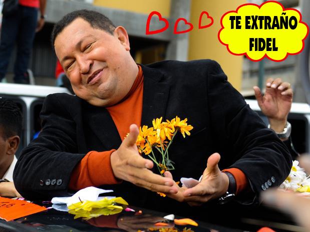 graciosas que pasaron en la Campaña de Henrique Capriles Radonski