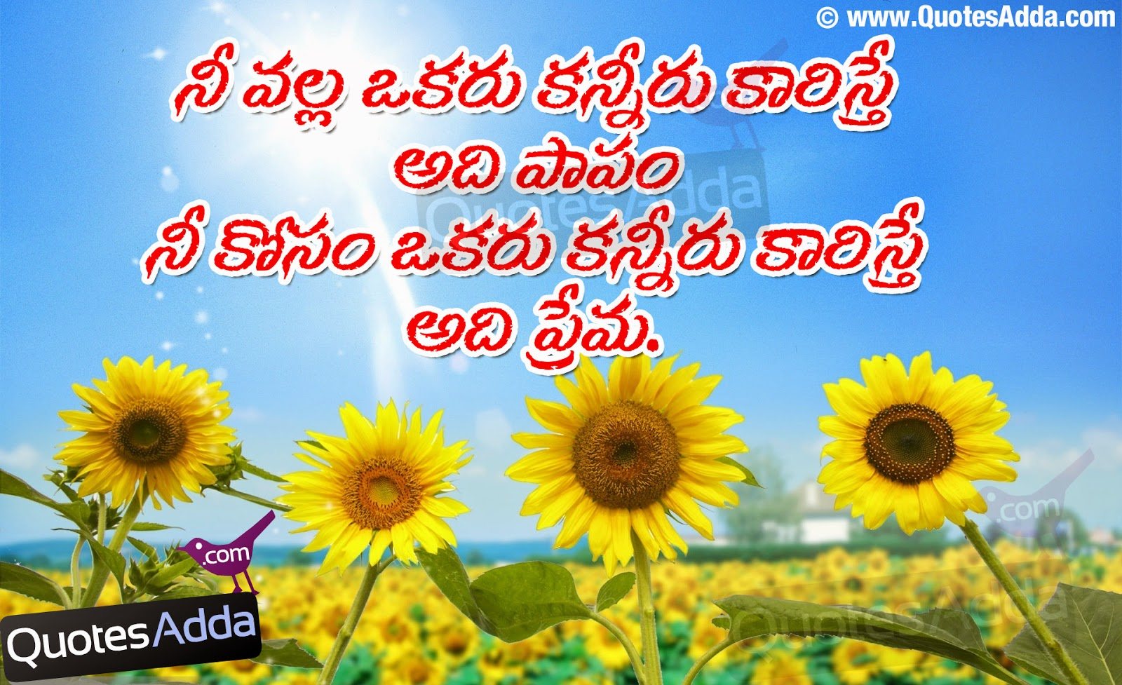 Sad Quotes About Love In Telugu : Telugu+Life+Love+Sad+Meaning+quotations++-+JUL04+-+QuotesAdda.com.jpg