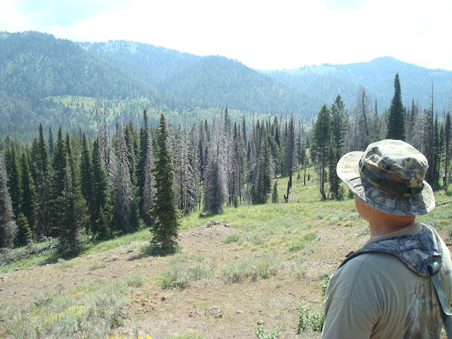 Archery Elk Hunting Idaho