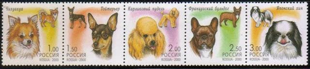 2000年ロシア連邦 チワワ トイ・テリア プードル フレンチ・ブルドッグ 狆の切手