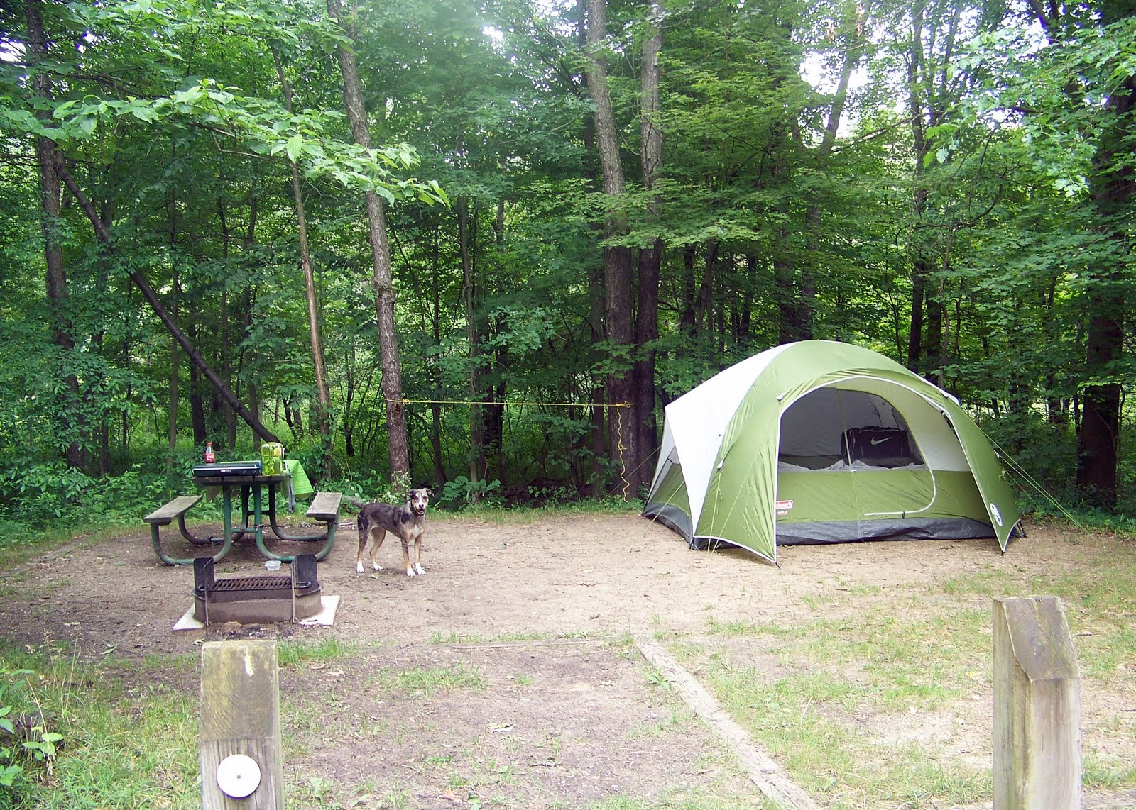 tlee blogs: Indiana Dunes National Lakeshore