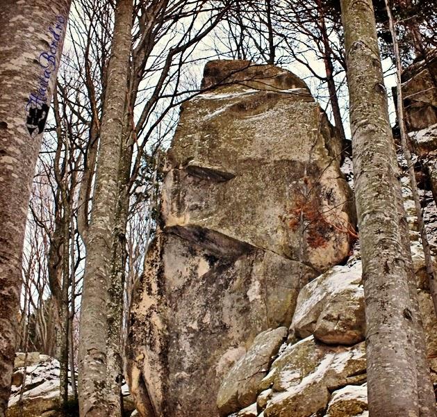 sfinx dac muntii buzaului