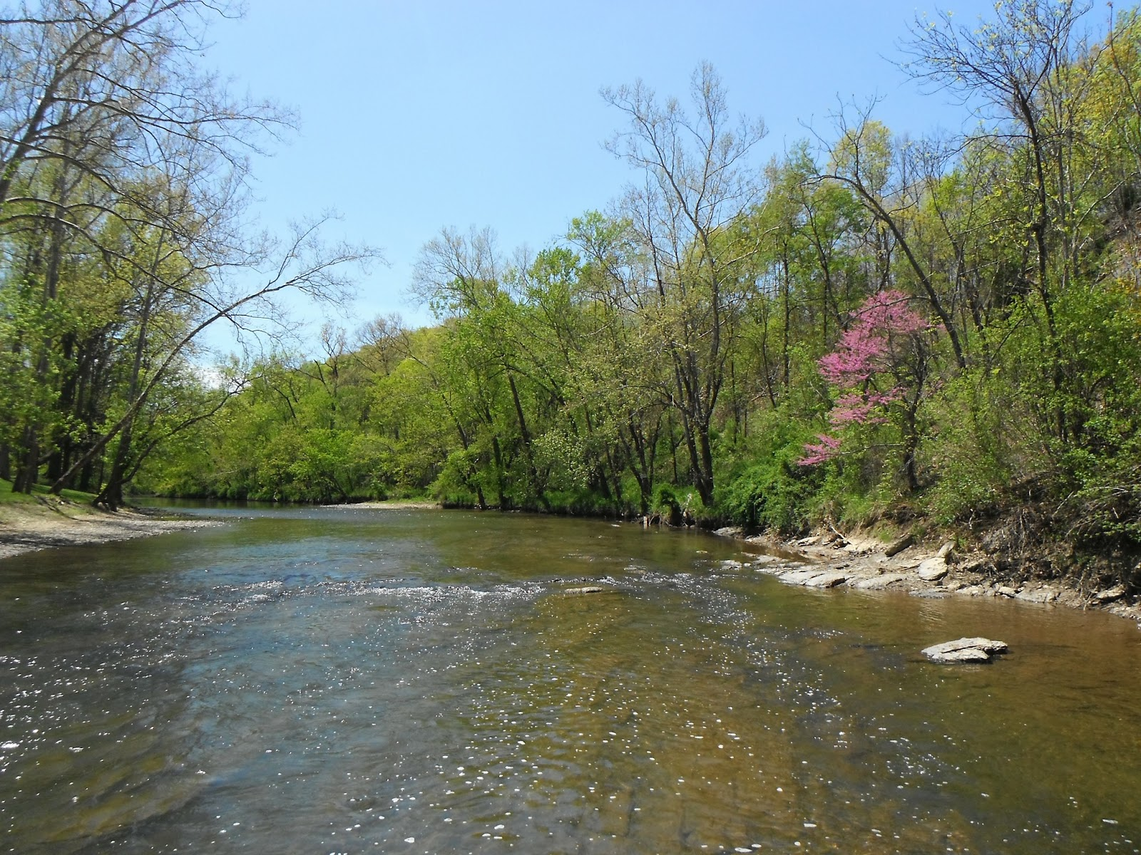 Western maryland fly fishing streams fly fisherman forget for Md trout fishing