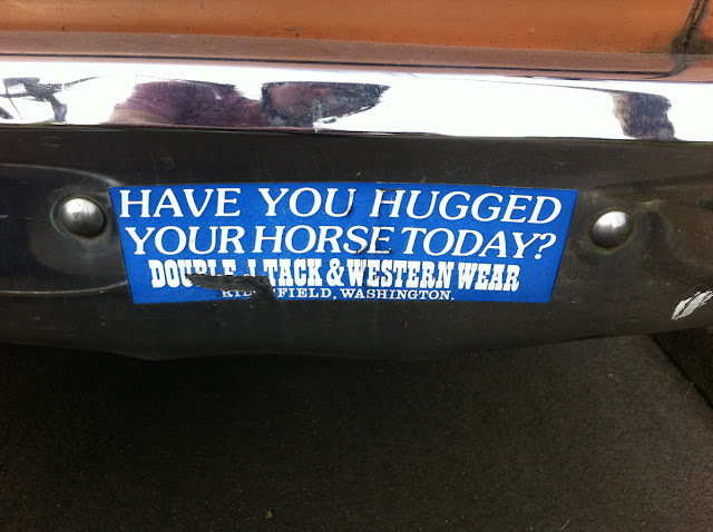 Double J Tack and Western Wear Sticker-Have You Hugged Your Horse Today?
