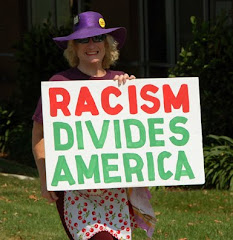 Tea Party Racism ???