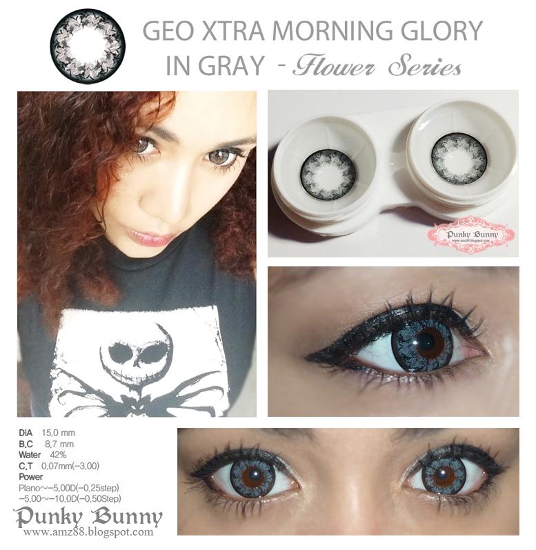 Morning Glory Bunny Xtra Flower Morning Glory