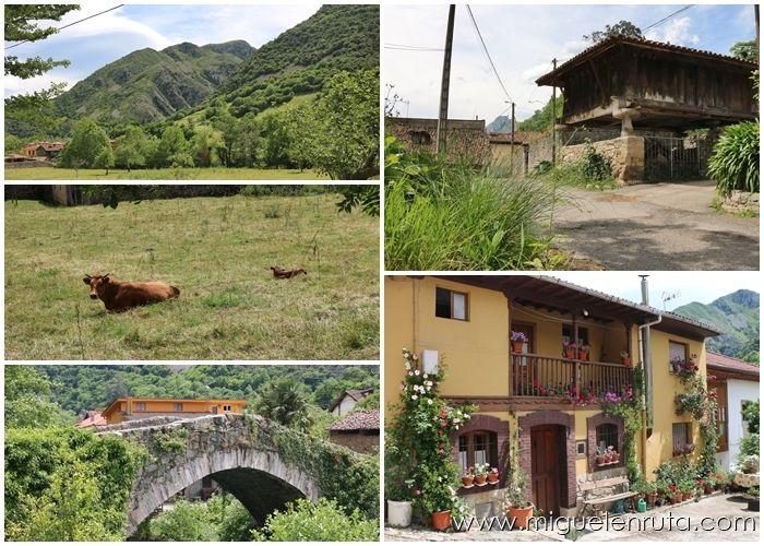 Senda-del-Oso-Asturias-Turismo-6