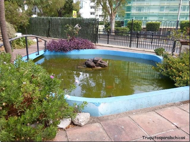 agua Gibraltar