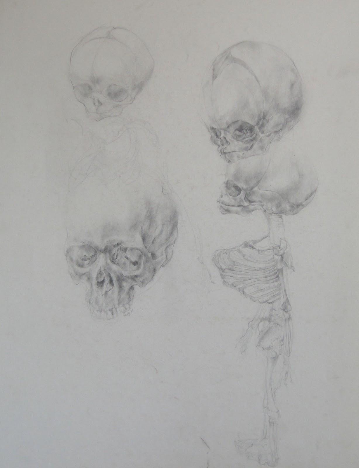 Steven Rhude - Paintings: Anatomy; Still an Option