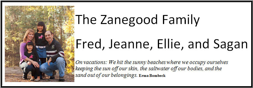 Zanegood Family Blog