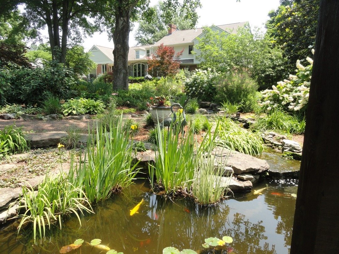 Garden plants nashville indiana pdf for Koi pond plant ideas