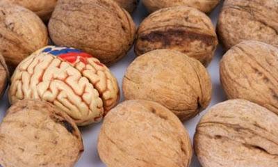 10 Makanan Super Pendukung Kesehatan Otak