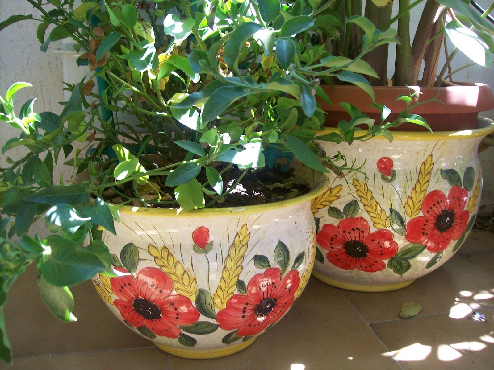 Ceramica che passione i vasi per le piante di maiolica for Vasi sospesi per piante
