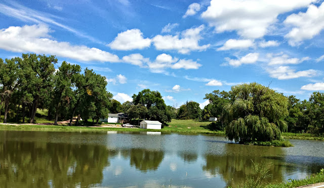 Pond in Valentine Fish Hatchery with weeping willow tree on island
