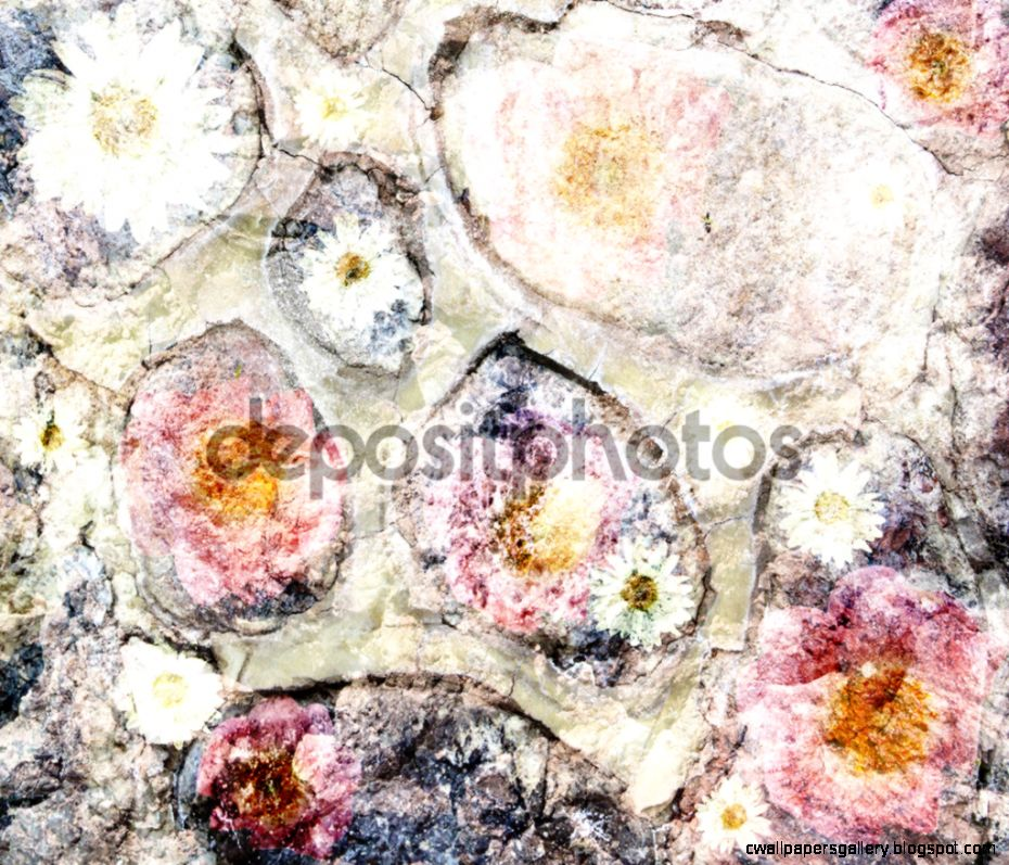 Scenic abstract background on the stones with pink and yellow fl