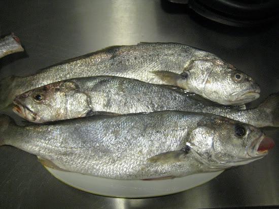 Que significa soñar con pescado