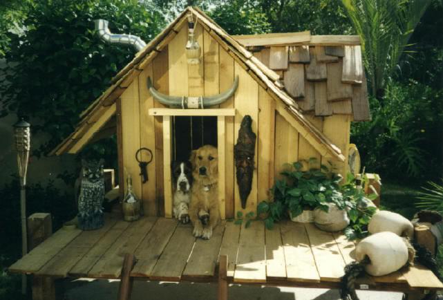 Deportes y animales casas originales de perros - Fotos originales en casa ...