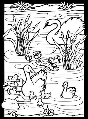 inkspired musings Ugly ducklings