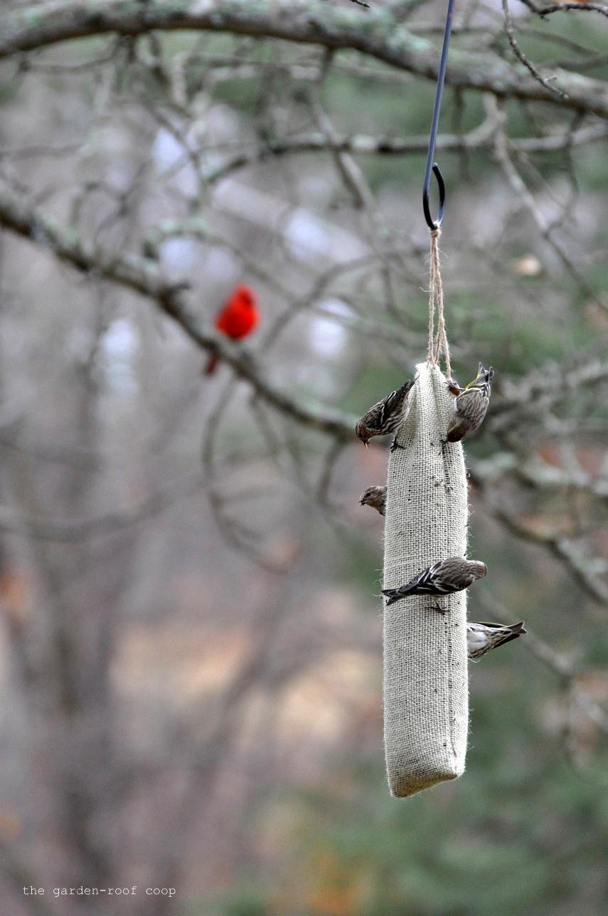 pin other bird of feeders feeder thistle etc sock burlap diy lots