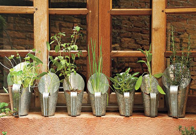 mini jardim de temperos : mini jardim de temperos:Hort&CIA: Como cultivar sua Mini-Horta