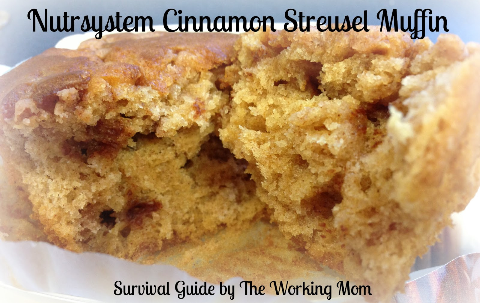 Nutrisystem blueberry muffins coupon for nutrisystem for Lean cuisine vs jenny craig food